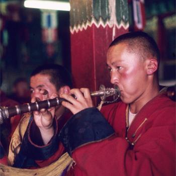 musician mongol